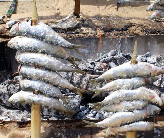 Espetos de sardinas. Chiringuito Brizo en Isla Cristina (Huelva)