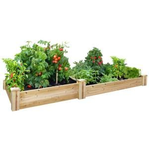 13 Best Images About Home Depot Garden Wish List On