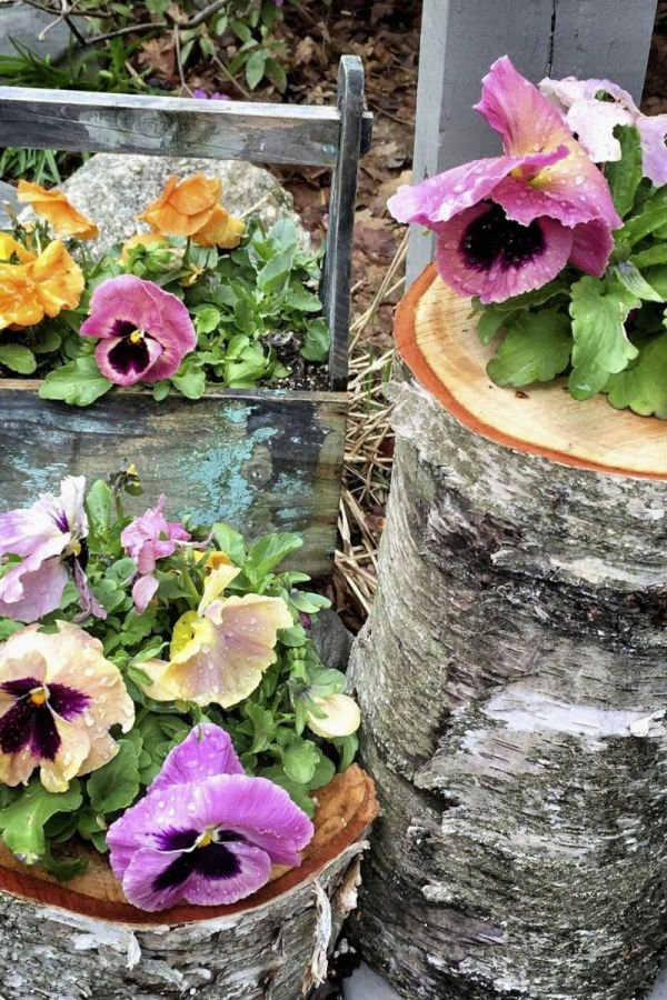 12 Lovely DIY Container Garden Designs you might consider for your