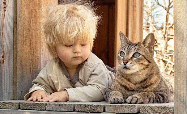 bebes-con-gatos-17
