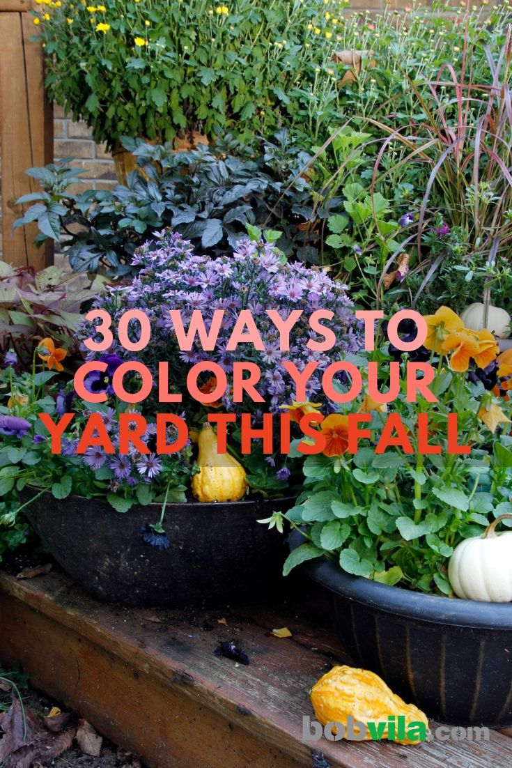 30 Ways To Color Your Yard This Fall Beautiful Flowers Garden