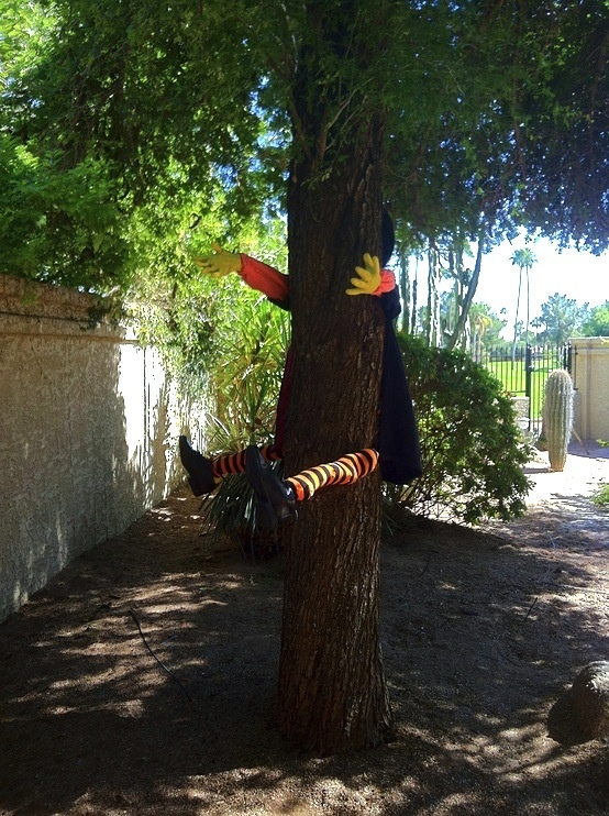 halloween witch crashing into tree