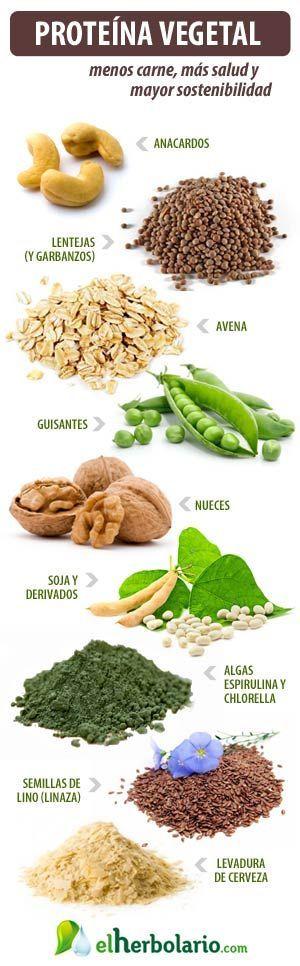 """Proteína vegetal, para una vida sin carne   El Herbolario: <a href="""""""" rel=""""nofollow"""" target=""""_blank""""></a>"""