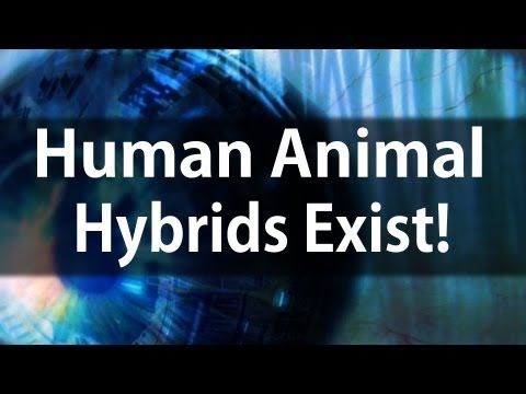 ▶ MUST WATCH! Human Animal Hybrids Exist! | Tom Horn | It's Supernatural with Sid Roth - YouTube