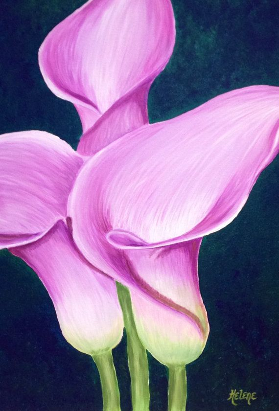 Pink-Lavender Calla Lily Painting, Acrylic on Canvas, Ready to Hang