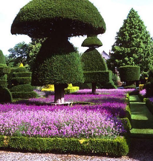 206 best Wow Gardens images on Pinterest Beautiful gardens