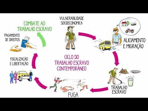 Ciclo do Trabalho Escravo Contemporâneo