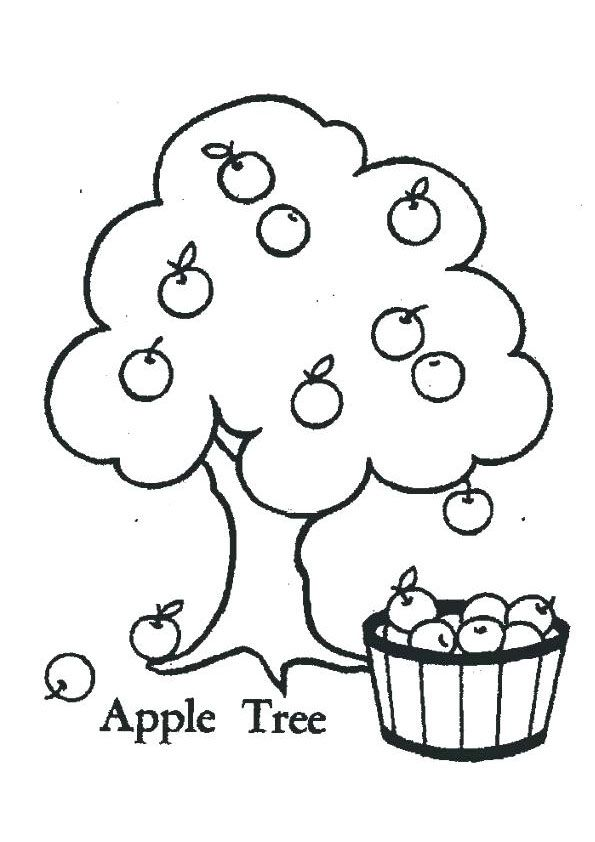 Apple Tree Coloring Page For Kids Fruit Coloring Pages Apple Coloring Pages Preschool Coloring Pages