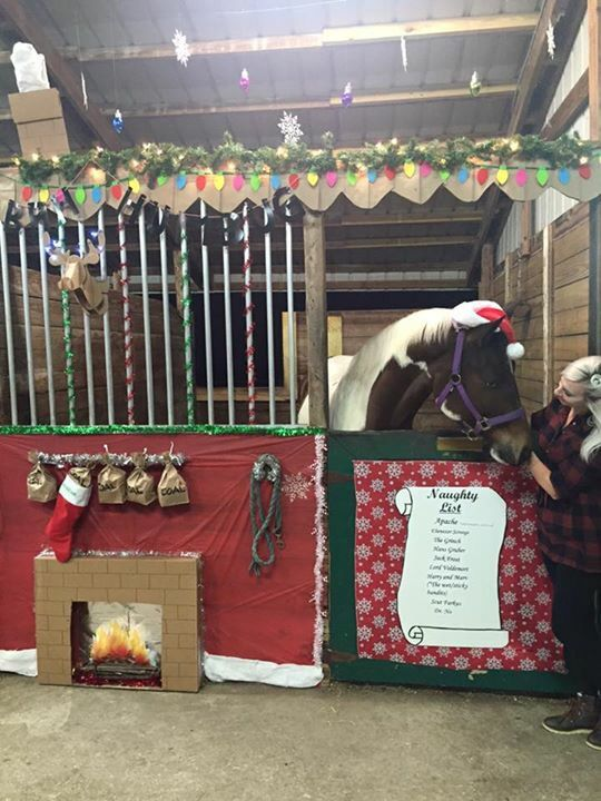 "A wider view of Apache's stall... My horse's Christmas stall for our 2015 stall decorating contest... I revisited our ""Naughty List"" theme from a few years back. His name is at the top of the naughty list (as always!), coal in his stocking that is hanging from the mantle above the fireplace, and new this year... A cardboard mounted deer head (from target) and dollar store lights on its antlers to hang over the mantle. There's a chimney with ""smoke"" coming out at the top of his stall and I…"