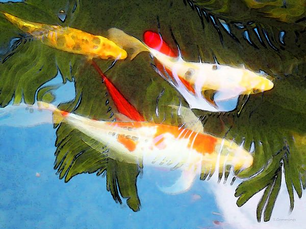 Slow drift colorful koi fish painting by sharon cummings for Green koi fish for sale