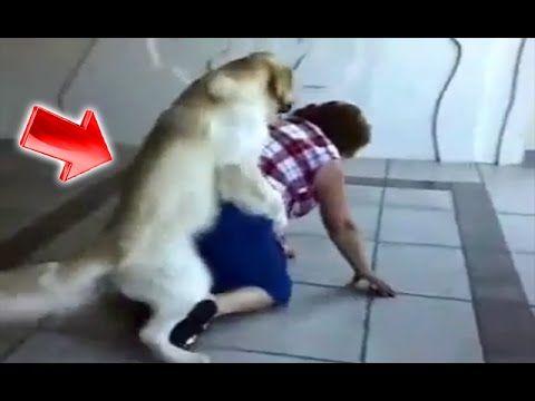 Funny YouTube Videos - Amazing Utube Movies