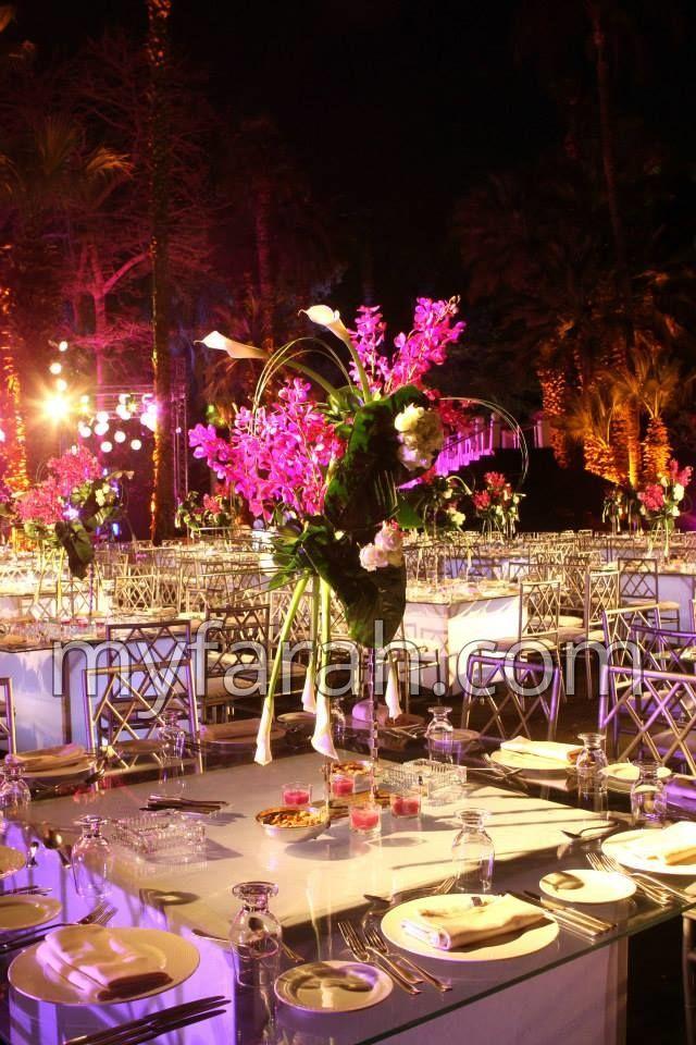27 best destination egypt images on pinterest bodas receptions four seasons hotel cairo junglespirit Images