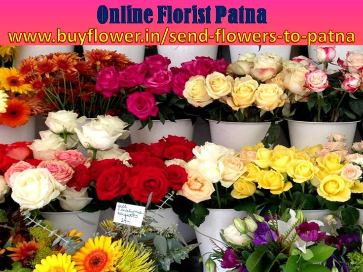Patna Flowers delivery option is available here Athmalgola, Badalpura, Bakhtiarpur, Barh, Bihta, Bikram, Danapur, Dinapur Cantonment, Dinapur Nizamat, Fatuha, Hasanchak, Khagaul, Gopalganj, Khusrupur, Kiul, Khazanchi Road, Maner, Masaurhi, Mokama, Naubatpur, Nohsa, Paliganj, Phulwari Sharif, Punpun, Saidpura, Taregana and etc. If you want to send flowers to patna in any events and more gifts also so you can delivers Patna flowers delivery. Online Florist Patna Is best Florist in Patna…
