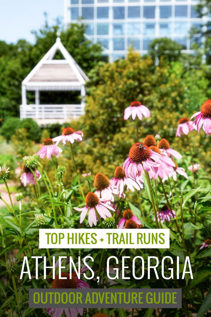 Athens, GA: Our favorite hikes and running trails near UGA and the Classic City