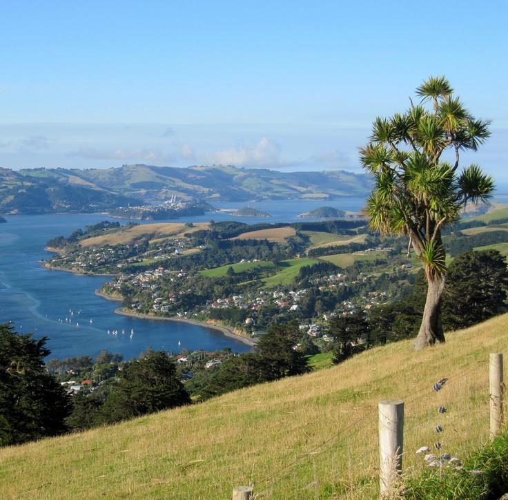 View across Otago Harbour, Dunedin, New Zealand.