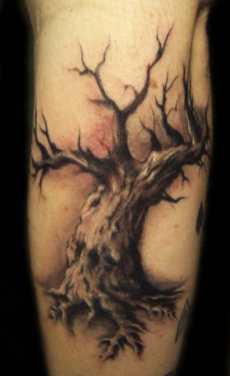 3d tattoos that will boggle your mind bizarbin - Tattoos Modification Tattoos 2010 2013 Hatefulss Freehanded This A Few Days