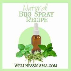 """Homemade Natural Bug Spray Recipes- includes making some from dried & fresh herbs. Most others just include essential oils. Link also includes the super strong """"Vinegar of the Four Thieves"""" recipe to be used internally (tincture) or externally (spray). Apparently used by thieves during the black plague to keep them from getting sick & to keep biting bugs off them. It's antiviral & antibacterial."""