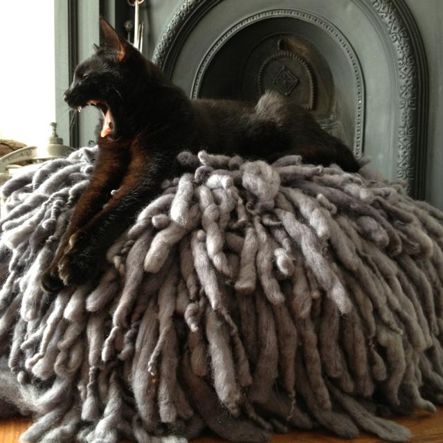 Sooz the cat | Abigail Ahern rasta floor cushion