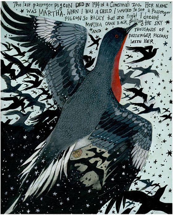 Diana Sudyka - The last passenger pigeon