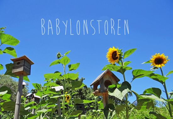 Babylonstoren | http://www.rhinoafrica.com/blog/2014/01/10/holiday-to-do-list-1-babylonstoren/