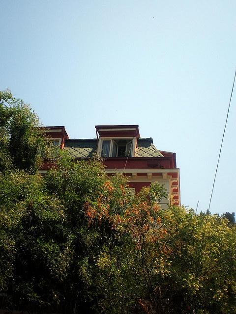 ventana_delarbol by las ventanas del bella, via Flickr