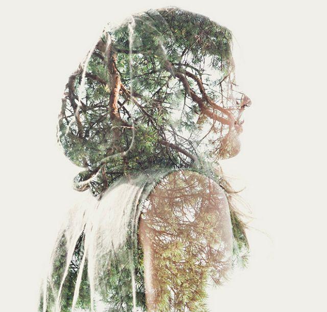 Diseño dautore.com: Somos la Naturaleza, le foto di Christoffer Relander