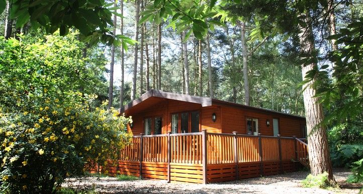 Kelling Heath Holiday Park - Norfolk 'Dog Friendly' Stay in one of our impressive woodland lodges, a luxury holiday home, or your own touring caravan or tent. Experience the unique environment....