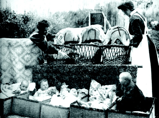Babies in bassinets at Truby King's cottage, approx. 1906