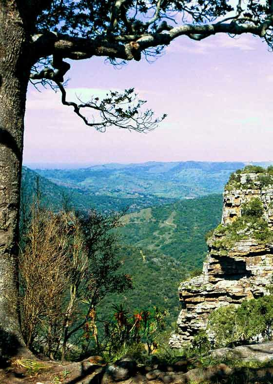 Oribi Gorge Kwazulu Natal