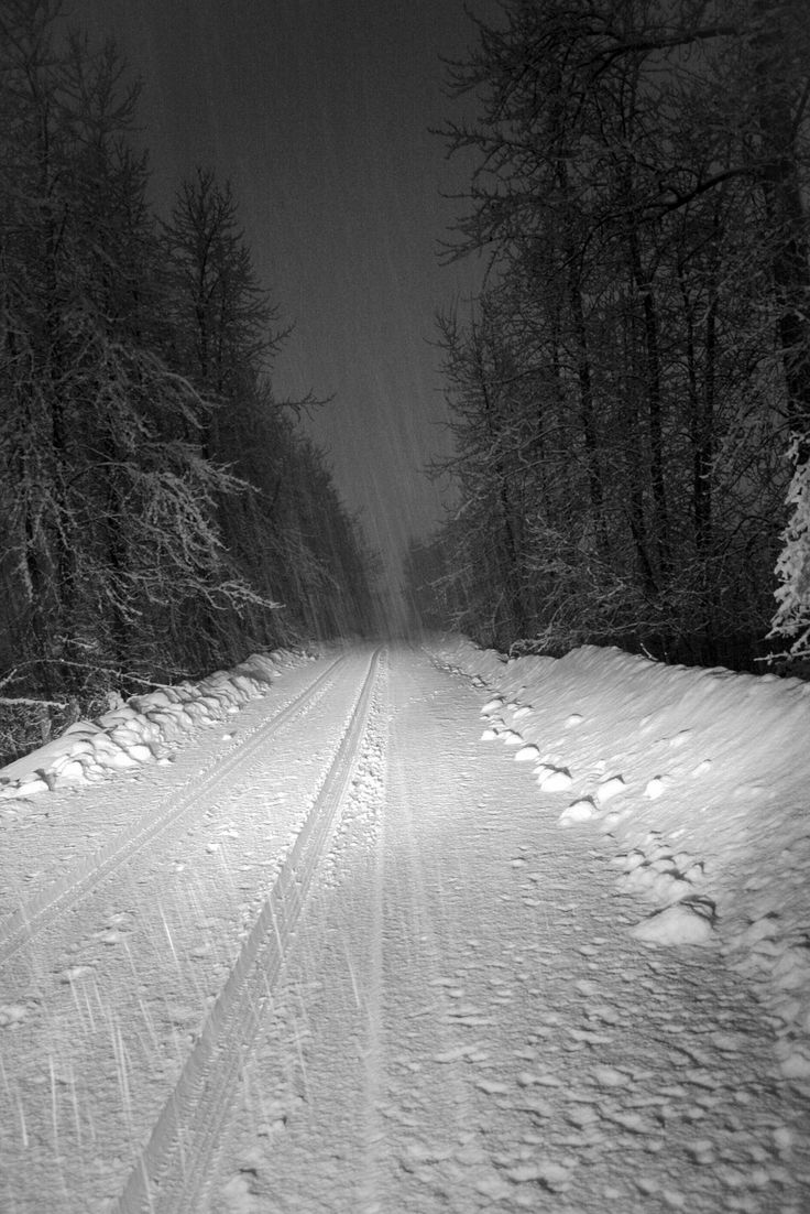 Snowy road in British Columbia (Guardian Readers' travel photo competition: October – road trips)