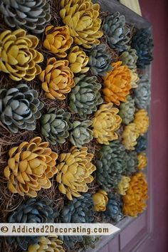 DIY succulents made out of pistachio shells (wreath is scary, but I can't think of a better use for them...lol. ;-))