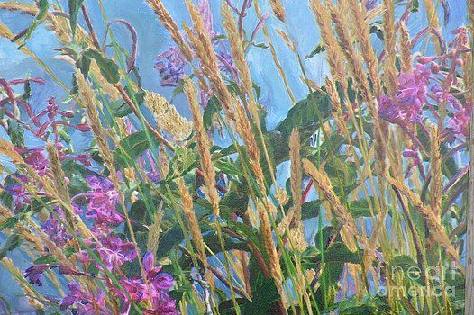 Brian Boyle - Fireweed number Six