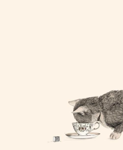 Kittens And Tea.