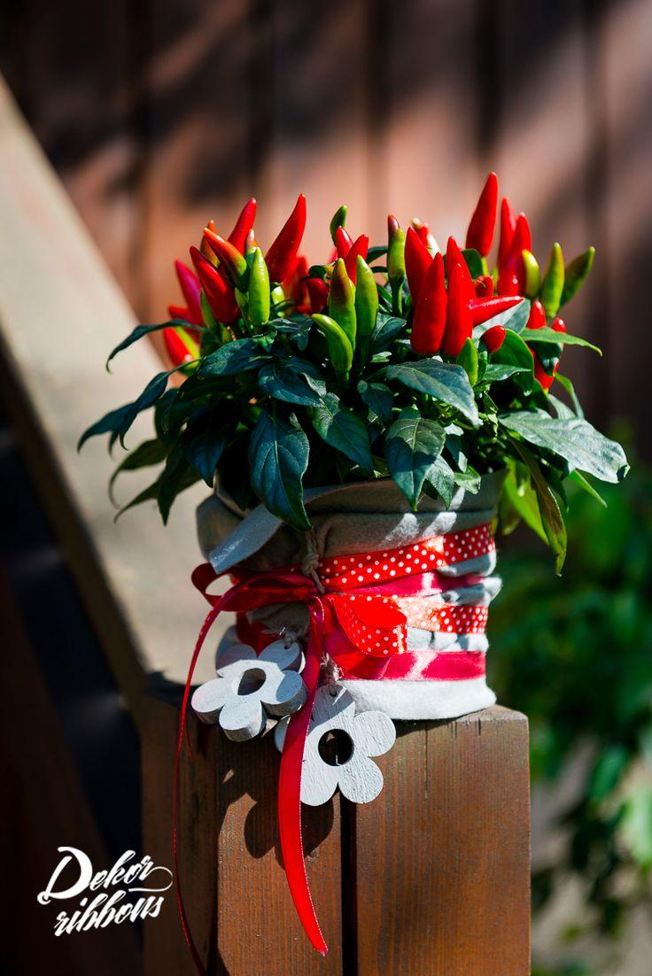 Dekorativní obal pro květináč? Žádná věda :-)   Decorative cover for flowerpot ? No science :-)