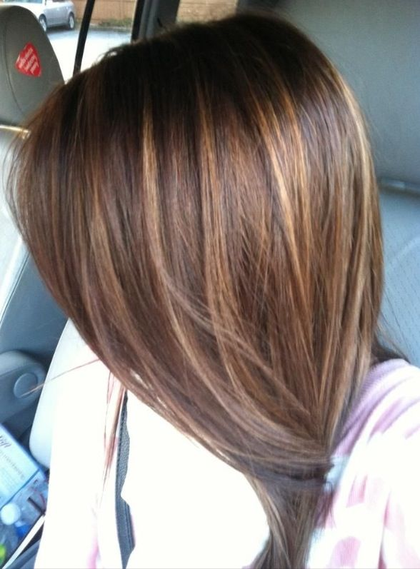 Dark brown with Carmel highlights