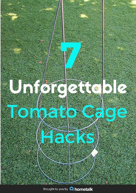 think a tomato cage is just for growing tomatoes look at these hacks, crafts, gardening, repurposing upcycling, Pin this to share these amazing hacks with your friends