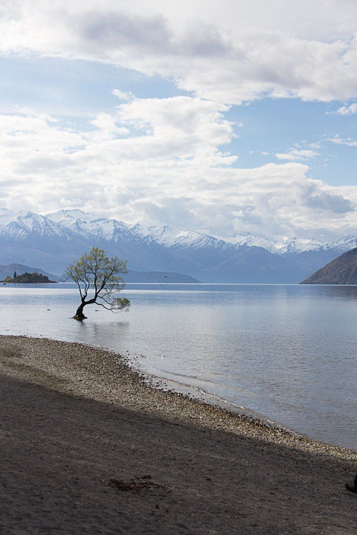 New Zealand Travel: A week in Wanaka. Things to do, see & places to eat.