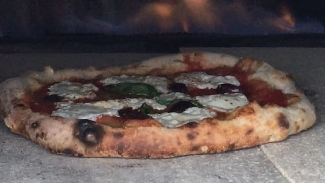 PIZZA in the GAS fired oven! Having so much fun testing  the 🇮🇹 Fontana MANGIAFUOCO ✨GAS FIRED✨ pizza oven. It works incredibly well.  For areas with fire 🔥 🚫 restrictions, or any backyard,  this oven is the ANSWER!  Link in bio to check out the entire line of ovens. @fontanaforniusa #pizzaoven #fontanaovens  #pizza #italianmade #eat #gasfiredoven #food #mozzarella  #foodvideo #100ita #italianmade #instavideo #instafood #instapizza