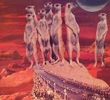 Reverant Meerkats by Jennifer Drake Schroeder