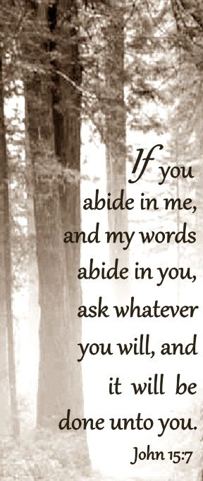 """If you abide in me, and my words abide in you, ask whatever you will, and it will be done unto you."" ~ John 15:7 The power of abiding love. How do we stand for anything less?"