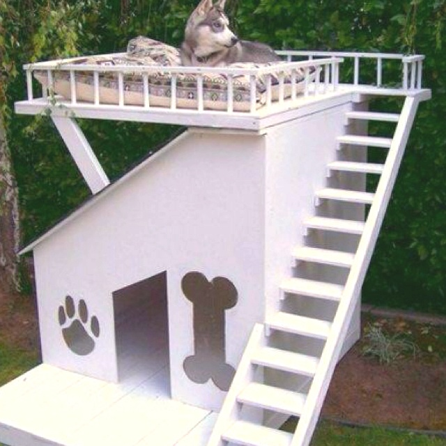 Wooden Toys additionally Awesome Chinchilla Cages likewise Laundry Room Layouts additionally Dog Cardboard Shelves also Chicken Coop Clipart Black And White 24825. on pinterest dog house plans