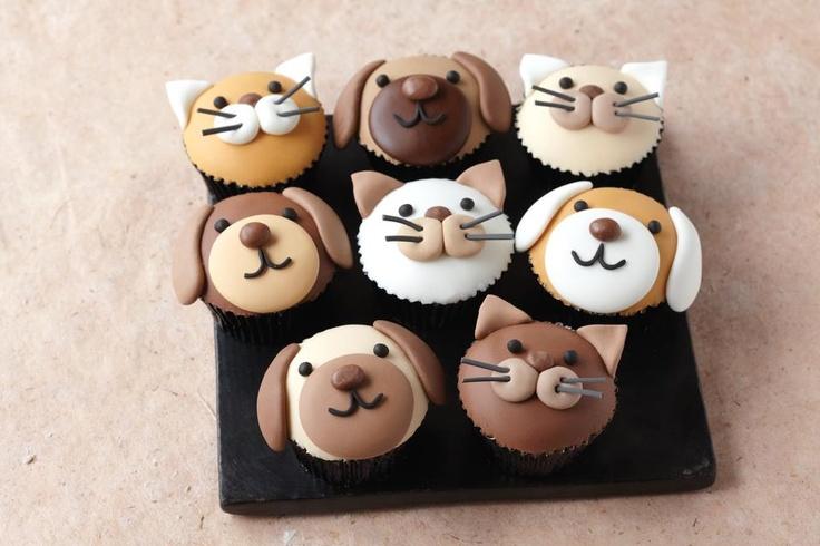 cupcake hond-kat