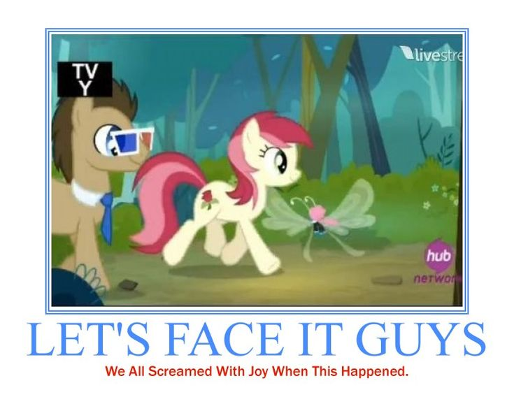 Doctor Whooves and Roseluck.  Yes.  Yes I did. This one cameo tied the entire episode to Doctor Who.