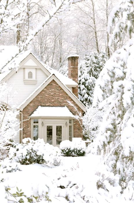 how would you like to be in there, drinking some hot cocoa, by a warm fire? I am putting this on my bucket list for one more winter in the snow before I go.