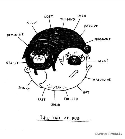 the tao of pug  © Gemma Correll