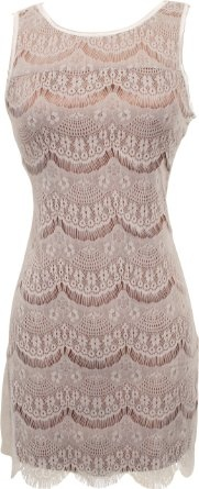 Amazon.com: Scalloped Lace Overlay Mini Flapper Dress Junior & Junior Plus Size: Clothing