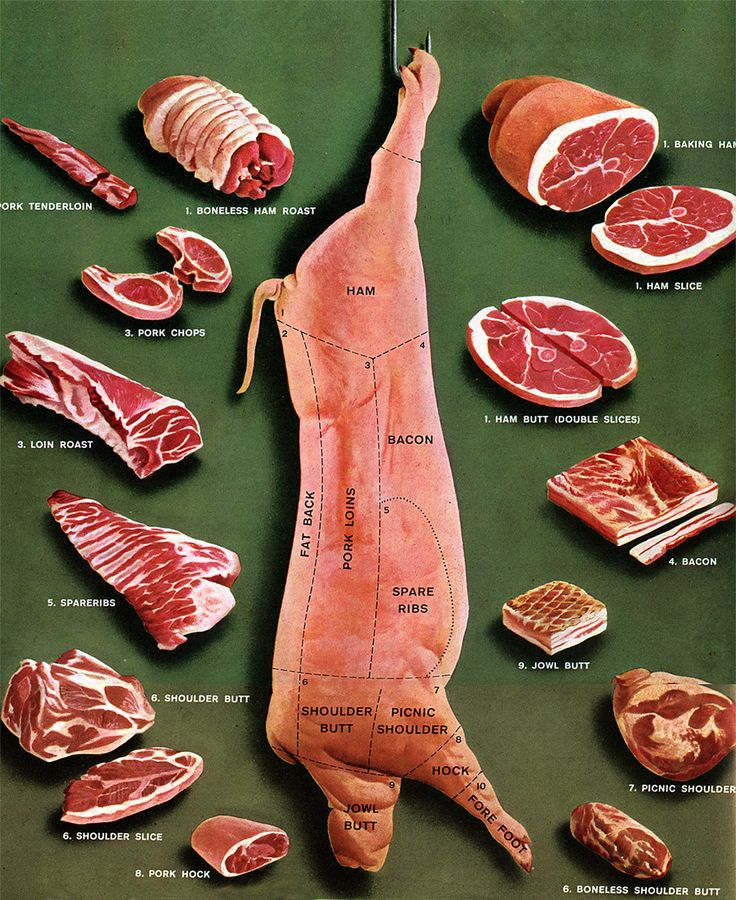 Anatomy of a pig and the different cuts of pork. Not the most appetizing photo, but def. good reference material.