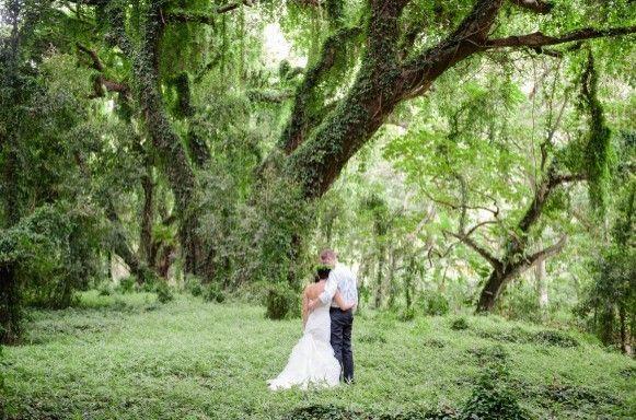 Maui Wedding - Rainforest Day After Photo Shoot
