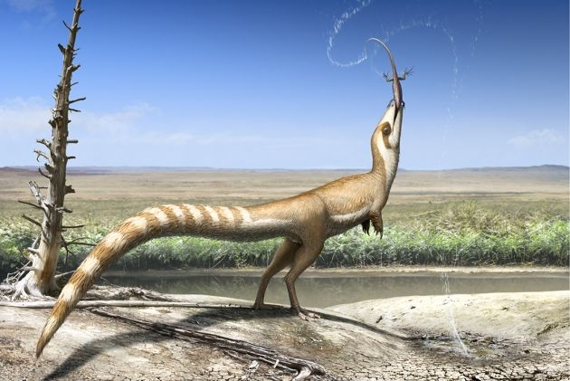 'Elevenses'. By Bob Nichols @Paleocreations. The plumage pattern on a specimen of Sinosauropteryx suggests it lived in an open habitat according to a new study (Smithwick et al., 2017)