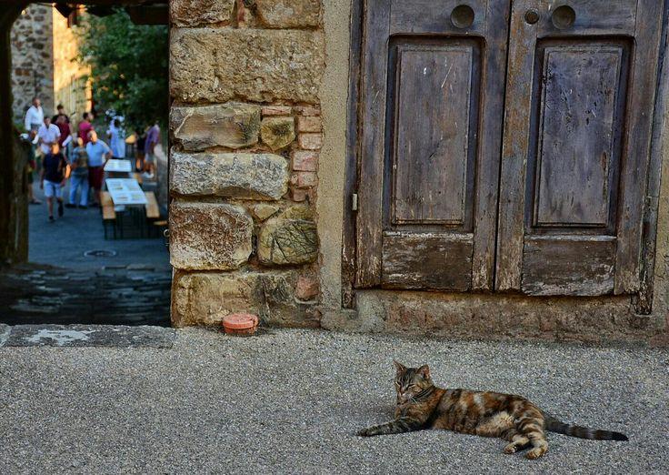 La dolce vita. Tuscany. Photo Luca Di Monte